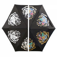 Harry Potter Colour Changing Umbrella