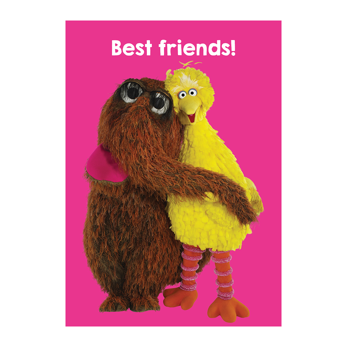 sesame street big bird snuffleupagus best friends greeting card - Big Greeting Cards