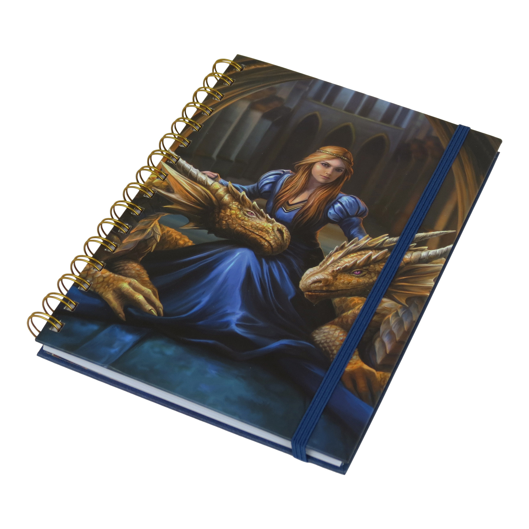 Anne Stokes Fierce Loyalty Dragons A5 Notebook