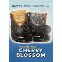 Cherry Blossom Shoe Polish Postcard