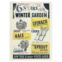 6 Stars From The Winter Garden Postcard