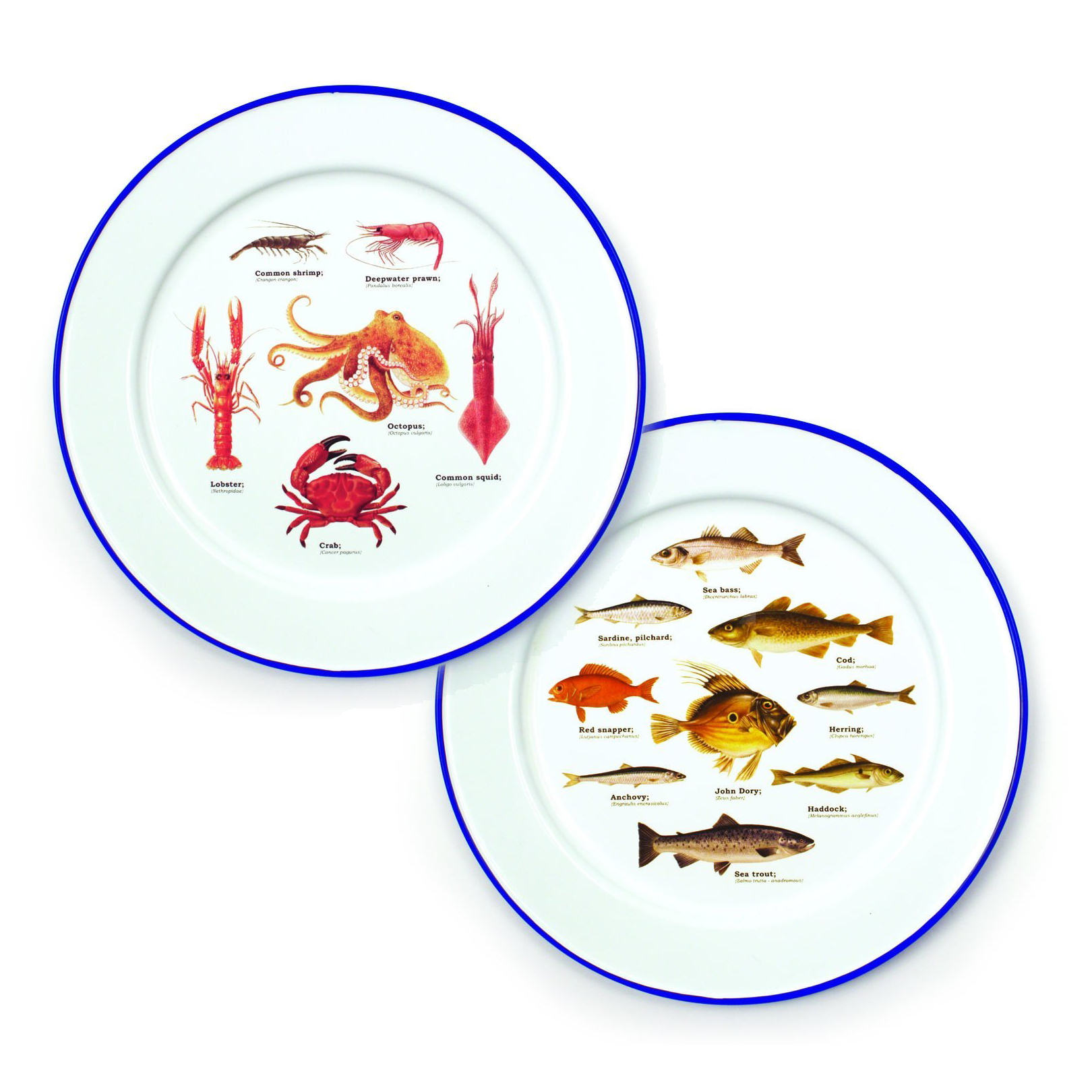 Set Of 2 Ecologie Sea Life Enamel Plates