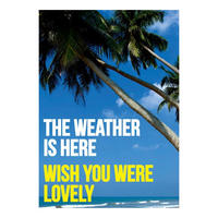 The Weather Is Here. Wish You Were Lovely Postcard