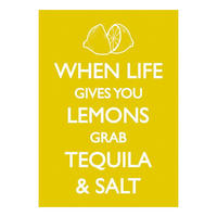 When Life Gives You Lemons Grab Tequila And Salt Postcard