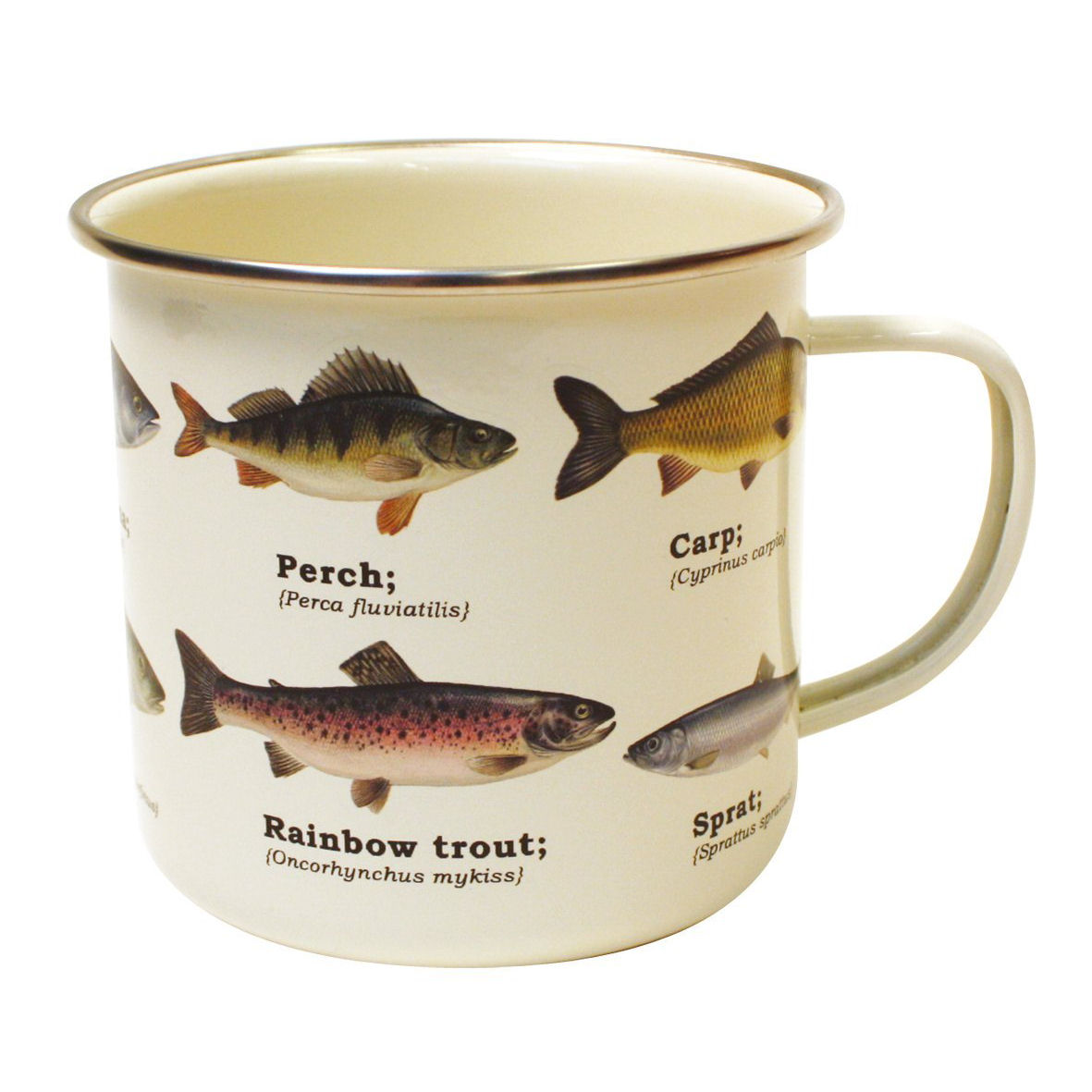 Fish Species Enamel Mug
