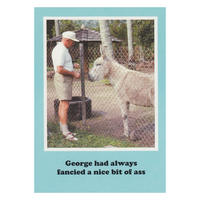 George had always fancied a nice bit of ass Greetings Card