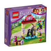 41123 LEGO Foal's Washing Station FRIENDS