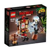 70606 LEGO Spinjitzu Training NINJAGO