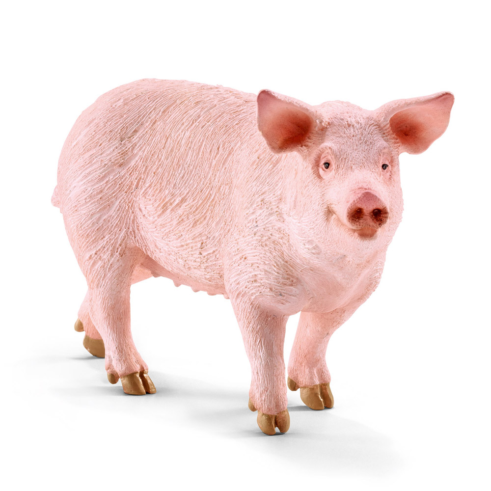 What statement of human nature is Animal Farm making?Explain using examples.