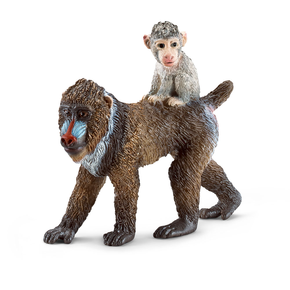 Ebay Australia Dog Accessories