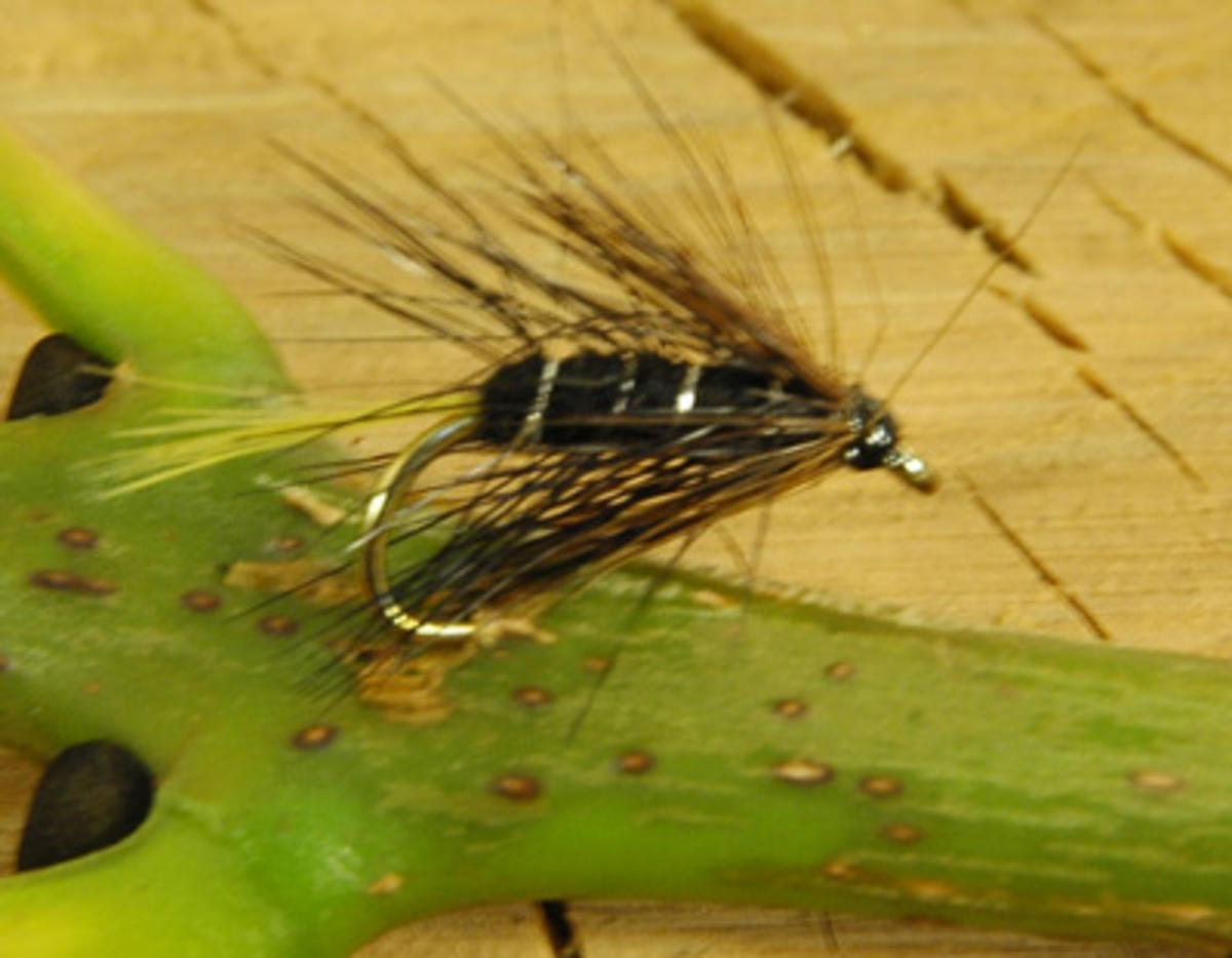 TALON TEN KATE MCLAREN SIZE 12 TROUT FLIES
