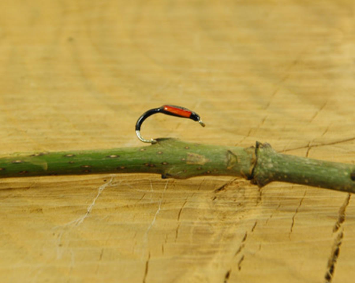 TALON TEN BLACK & ORANGE BUZZER SIZE 12 TROUT FLIES