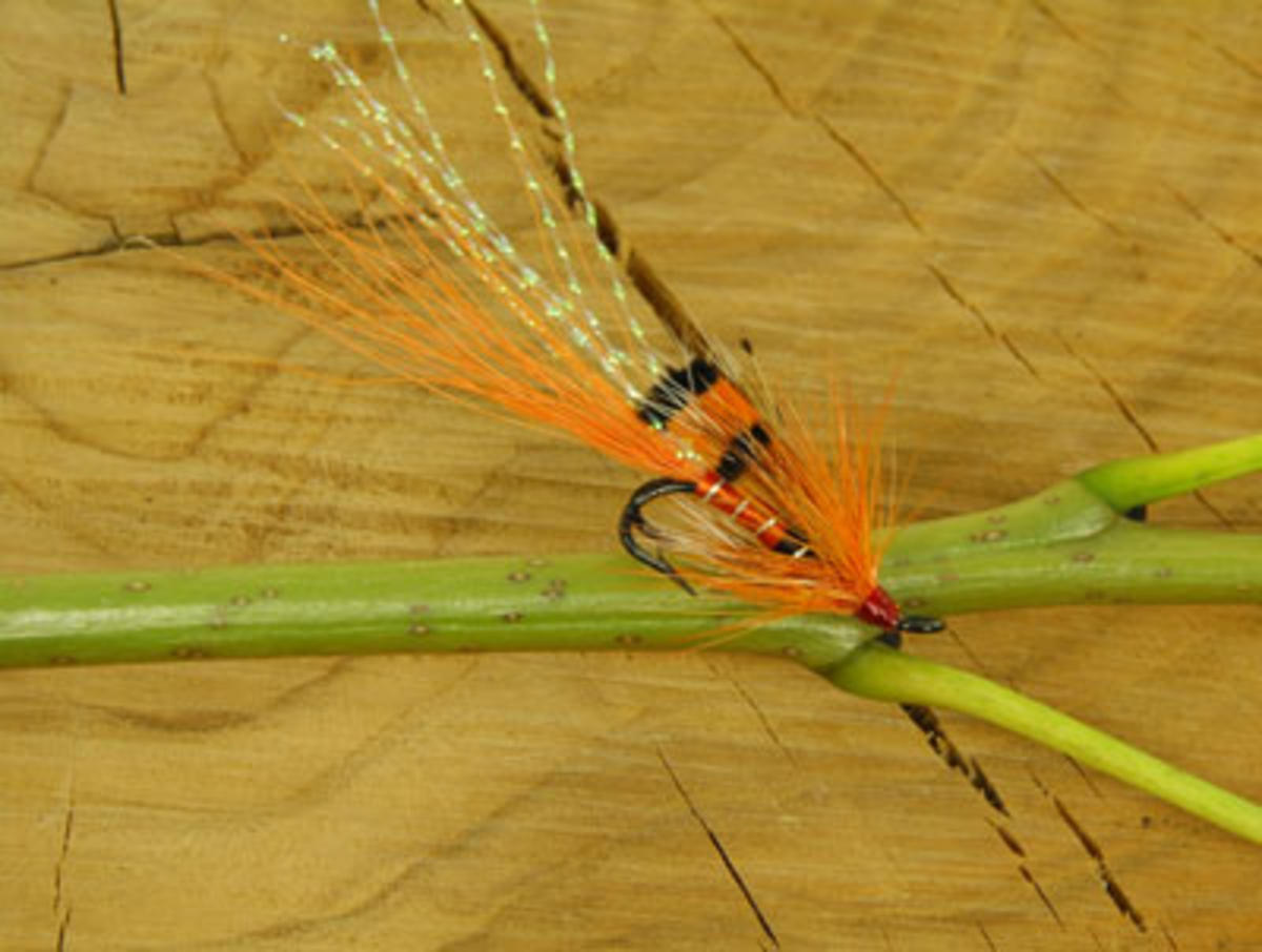 TALON TEN ALLY SHRIMP ORANGE SIZE 10 SALMON DOUBLES