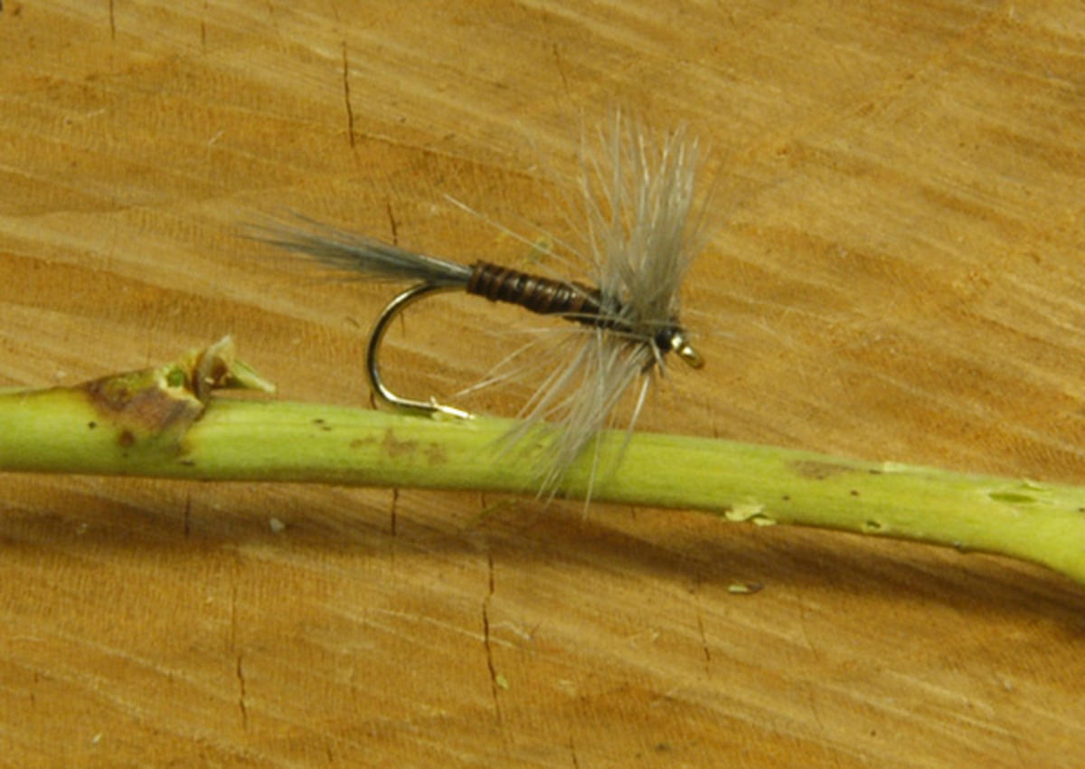 TALON TEN BLUE UPRIGHT DRY SIZE 14 TROUT FLIES