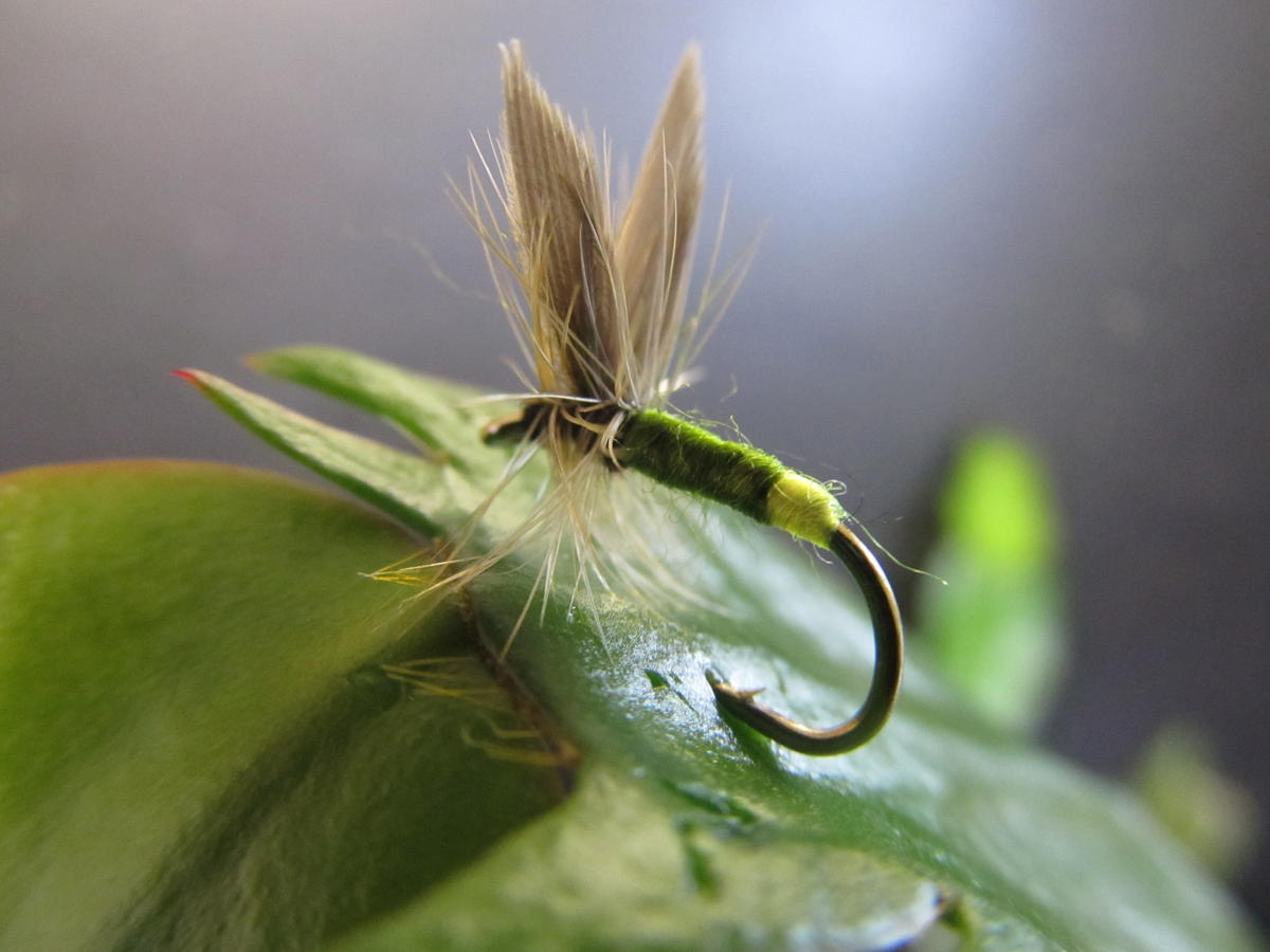 TALON TEN FLUORO GREEN TAILED GREENWELL GLORY DRY SIZE 12 TROUT FLIES