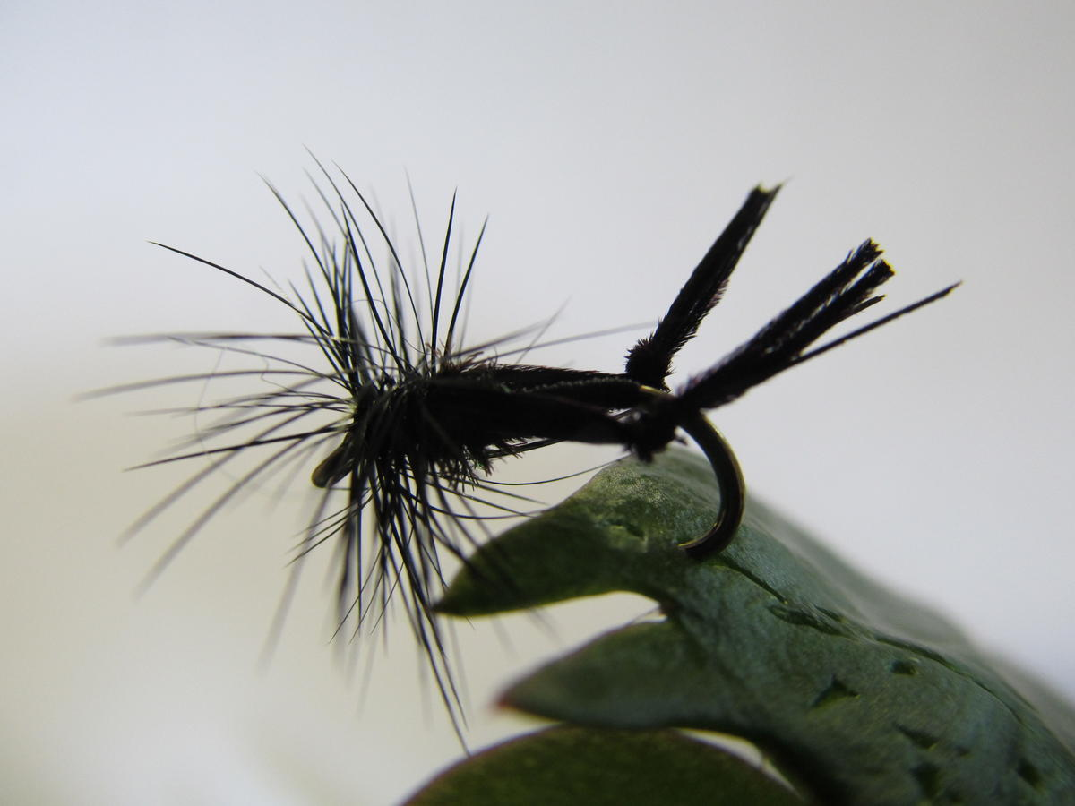 TALON TEN HAWTHORN DRY SIZE 14 TROUT FLIES