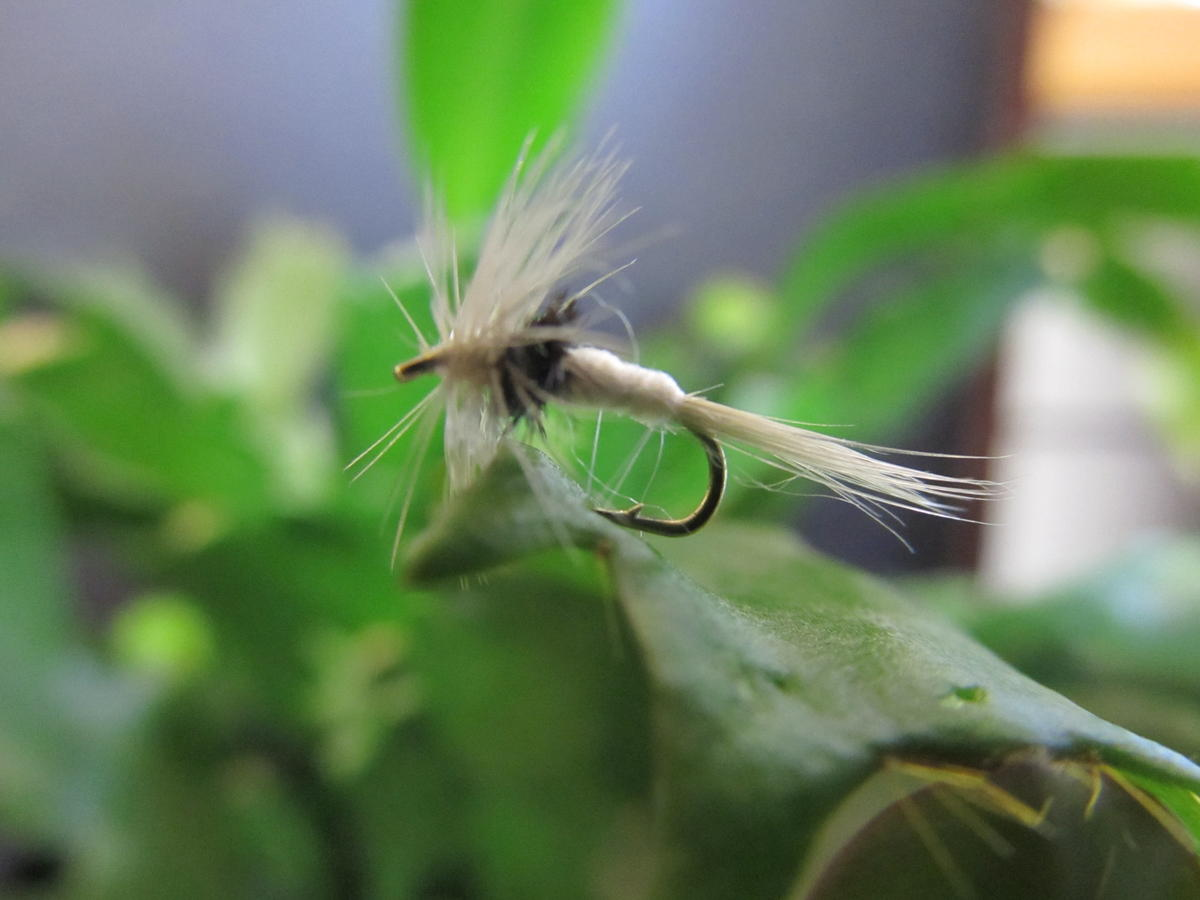 TALON TEN CAENIS DRY SIZE 16 TROUT FLIES
