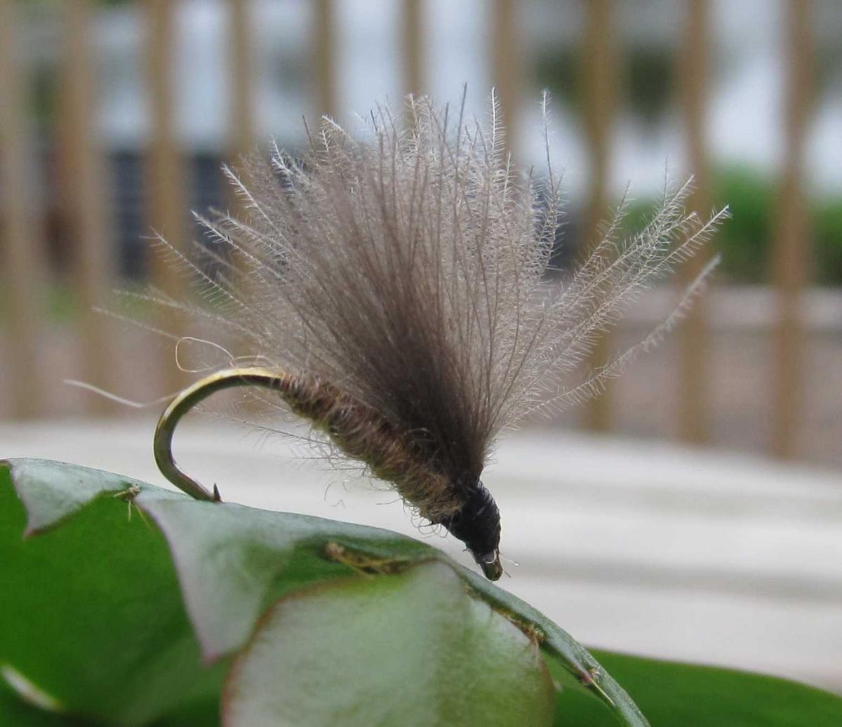 TALON TEN MARCH BROWN CDC F FLY SIZE 14 TROUT FLIES