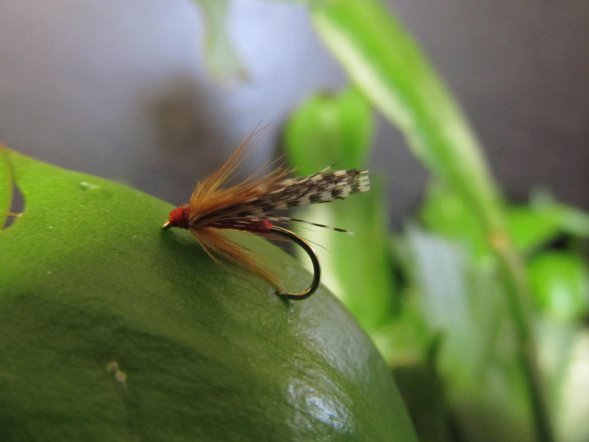 TALON TEN TEAL AND RED SIZE 14 TROUT FLIES