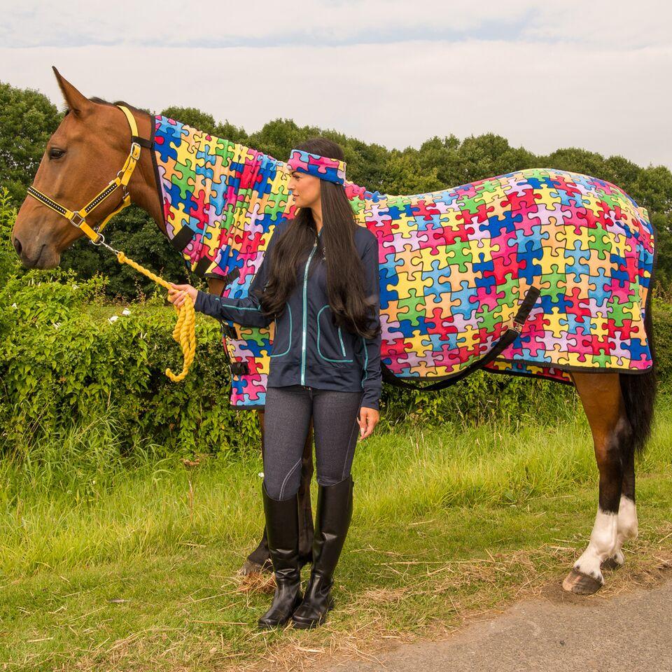 British Eventing Horse Show Rug Blue