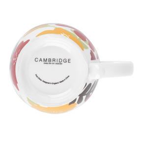 Cambridge CM03618 Kensington Autumn Cascade Fine China Mug Thumbnail 2