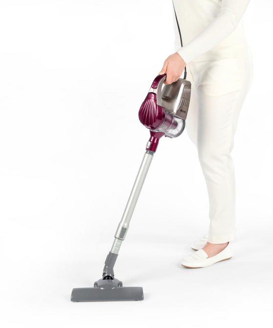 Salter SAL0001 2 In 1 Silver Aubergine Cyclonic Multi Vac Vacuum, 600 W [A Class Energy Rating]