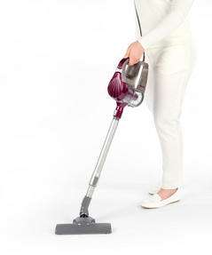 Salter SAL0001 2 In 1 Silver Aubergine Cyclonic Multi Vac Vacuum, 600 W [A Class Energy Rating] Thumbnail 1