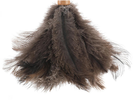 Beldray Bamboo Ostrich Feather Duster, 45cm Thumbnail 5