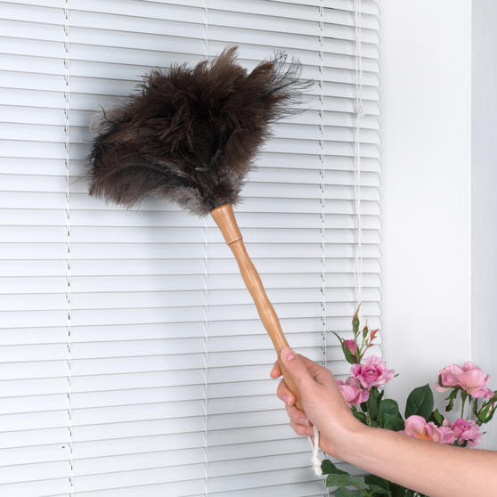 Beldray Bamboo Ostrich Feather Duster, 45cm Thumbnail 6
