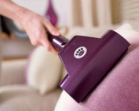 Hoover RE71VE20001 Velocity Bagless Cylinder Vacuum Cleaner, 2.5 Litre, 700 W, Purple and Champagne Thumbnail 6