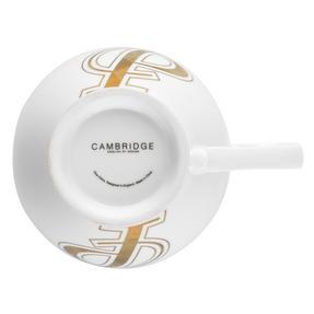 Cambridge CM04491MA Cheshire Gold Alphabet P Fine China Mug Thumbnail 5