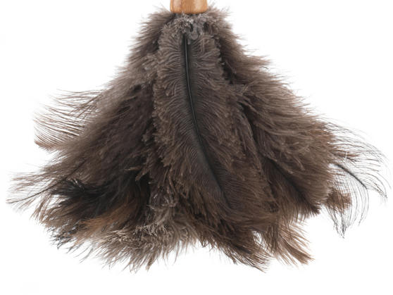 Beldray Bamboo Dustpan, Brush, Chenille Duster & Ostrich Feather Duster Set Thumbnail 5