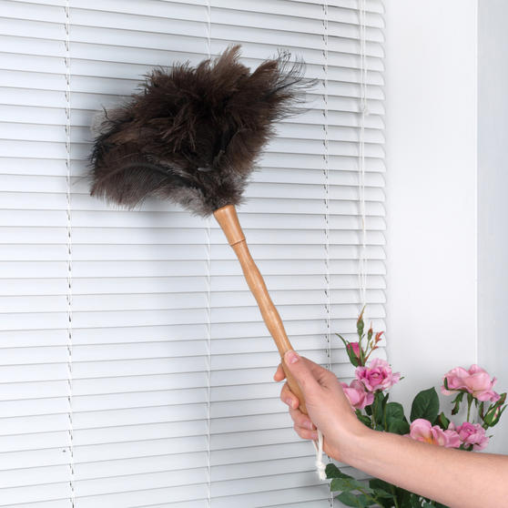 Beldray Bamboo Dustpan, Brush, Chenille Duster & Ostrich Feather Duster Set Thumbnail 6