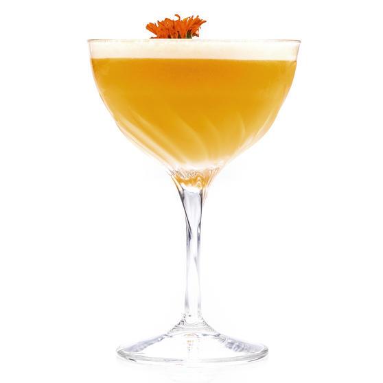 RCR 25284020006 Crystal Glassware Fluente Champagne Cocktail Glasses, Set of 6