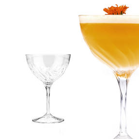 RCR 25284020006 Crystal Glassware Fluente Champagne Cocktail Glasses, Set of 6 Thumbnail 5