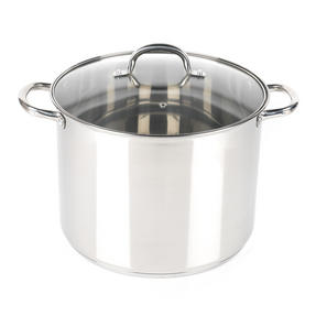 Russell Hobbs RH00175  Stock Pot with Glass Lid, Induction Safe, 30 CM / 16 L Thumbnail 1
