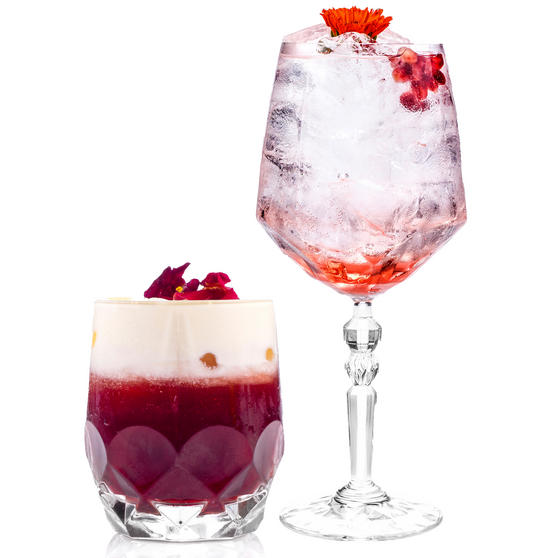 RCR COMBO-2223 Alkemist Crystal Cocktail and Short Tumbler Glasses Set, 12 Piece
