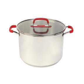 Pyrex P500734 Passion Stockpot With Lid, 24 cm, 7.8 L, Stainless Steel