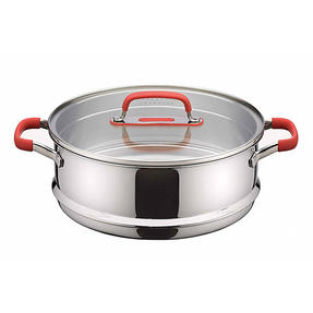 Pyrex P500735 Passion Steamer with Lid, 24 cm, Stainless Steel, Red Thumbnail 1