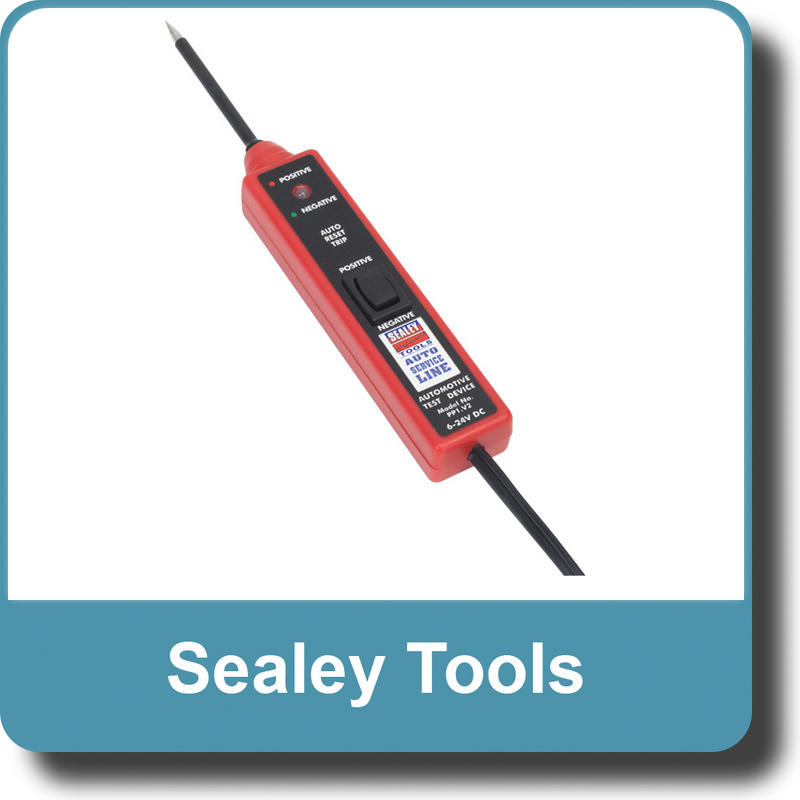 Sealey Auto Probe 6-24V PP1