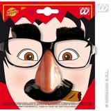 GLASSES WITH NOSE & MOUSTACHE Accessory for Fancy Dress