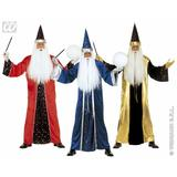 Mens FANTASY WIZARD Costume for Sexy Adult Role Play Fancy Dress Outfit