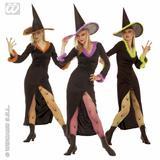 Ladies FANCY Costume for Halloween Oz Eastwick Fancy Dress Outfit