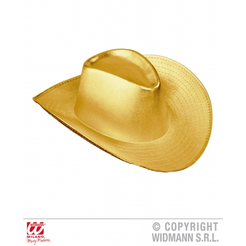 COWBOY HAT Accessory for American Wild West & Indians Fancy Dress