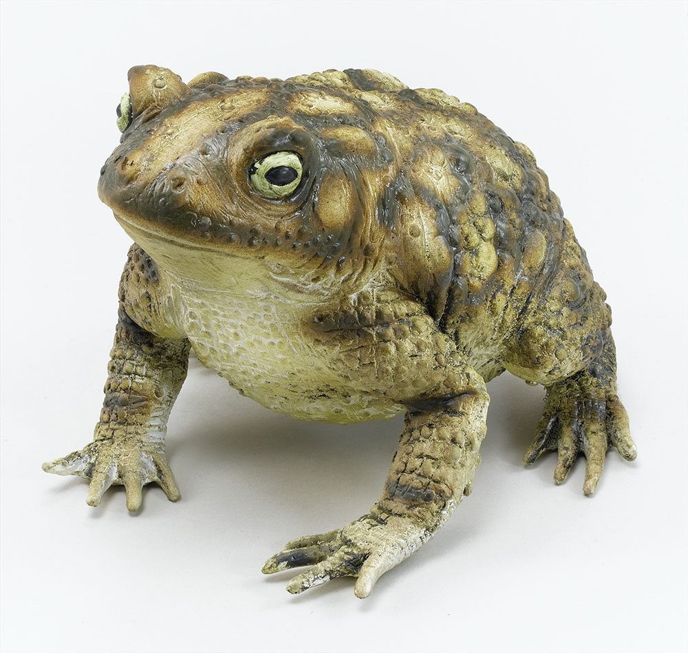 Rubber Toad Animal Prop Accessory for Animal Frog Fancy Dress Animal Prop