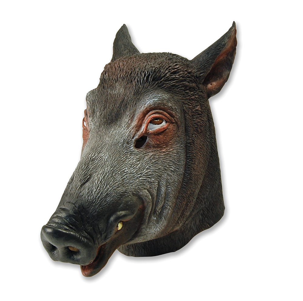 Boar Mask Pig Farm Animal Porky Peppa Fancy Dress