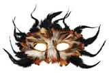 Owl Feather Eyemask Wise Bird Forest Animal Fancy Dress