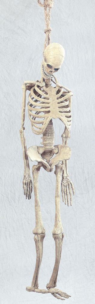 Halloween Skeleton Full Size Rubber Prop Trick Or Treat Fancy Dress Party