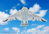 Snowy Owl Kite for Adult & Kids Bird of Prey Outdoor Camping Sports Games & Gift