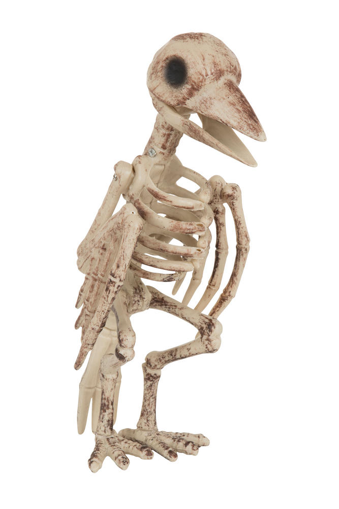 Halloween Skeleton Bird Prop Trick Or Treat Fancy Dress Party